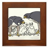 JCF-301 Falcon Family on Framed Tile