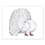Fantail White Pigeon Posters