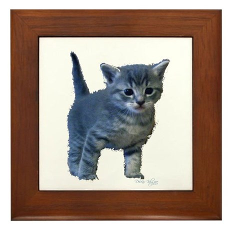 Kitten Framed Tile