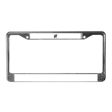 Kitten License Plate Frame