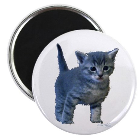 "Kitten 2.25"" Magnet (10 pack)"