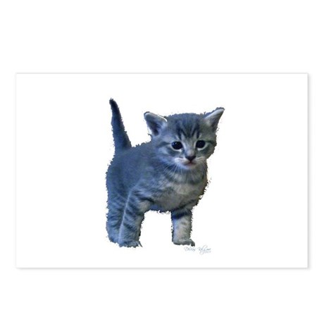 Kitten Postcards (Package of 8)