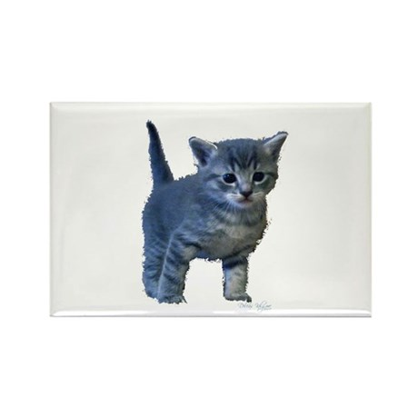 Kitten Rectangle Magnet (10 pack)