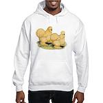 Buff Silkie Chickens Hooded Sweatshirt