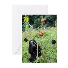 Djembe's Tree Greeting Cards