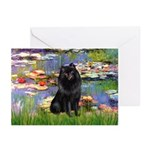 Lilies (2) & Schipperke Greeting Cards (Pk of 10)