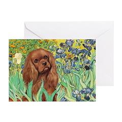 Irises & Ruby Cavalier Greeting Cards (Pk of 10)