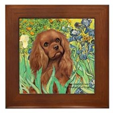 Irises & Ruby Cavalier Framed Tile