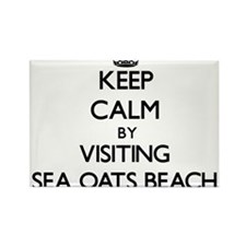 Keep calm by visiting Sea Oats Beach Florida Magne