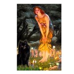 Fairies & Schipperke Postcards (Package of 8)