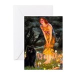 Fairies & Schipperke Greeting Cards (Pk of 10)