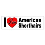 I Love American Shorhairs Bumper Bumper Sticker