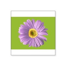 pop-daisy_pu_pc Sticker