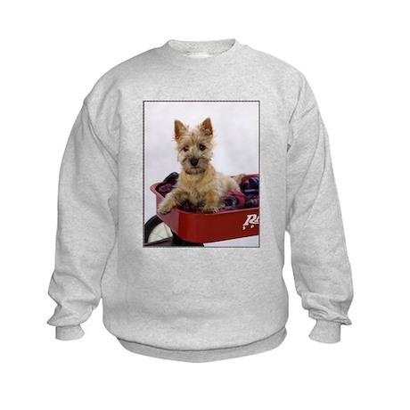 Baby Cairn Terrier Kids Sweatshirt