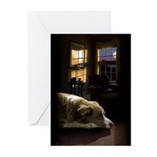 Alo Sleeping, 10 greeting cards