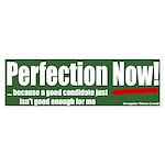Voter: Perfection Now! Bumper Sticker