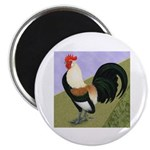 Dutch Rooster Magnet