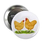 Buff Wyandotte Chickens Button