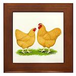 Buff Wyandotte Chickens Framed Tile