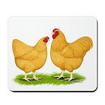 Buff Wyandotte Chickens Mousepad