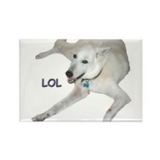 LOL Dog Rectangle Magnet (100 pack)
