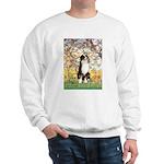 Spring - Tri Aussie 2 Sweatshirt