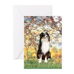 Spring - Tri Aussie 2 Greeting Cards (Pk of 10)