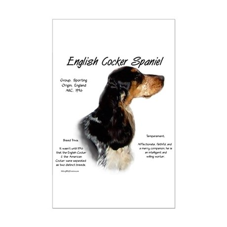 Parti Roan English Cocker Mini Poster Print