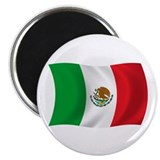 "Mexico Flag 2.25"" Magnet (100 pack)"