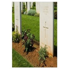 Australian & New Zealand Soldiers who perished in