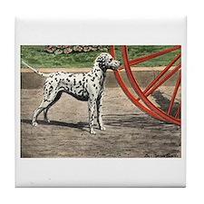 Dalmatian Art Tile Coaster