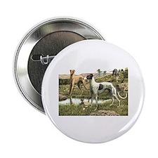 Greyhound Art Button