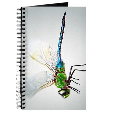 Dragonfly 3 Journal