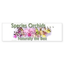 Species Orchids Promo Bumper Bumper Sticker