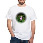Pink Lady's Slipper White T-Shirt