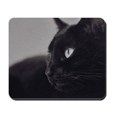 camara peacefulCat Mousepad