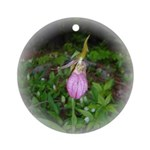 Pink Lady's Slipper Ornament (Round)