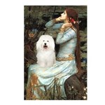Ophelia & Bolognese Postcards (Package of 8)