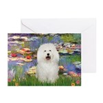Lilies (#2) & Bolognese Greeting Cards (Pk of 10)