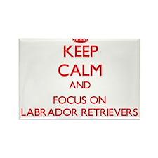 Keep Calm and focus on Labrador Retrievers Magnets