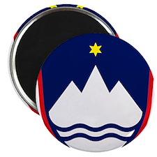 Unique International flag Magnet