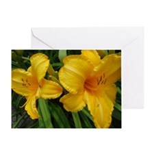 Sunburst Lilies Greeting Card