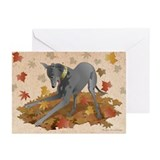 Greyhound Greeting Cards (20 Pack)