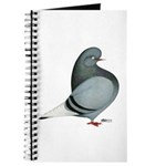 Blue PH Domestic Flight Journal