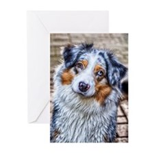 Australian Shepherd Greeting Cards (Pk of 10)