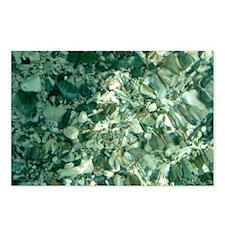 Ocean Pebbles Postcards (package Of 8)