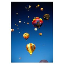 California, Laguna, Hot Air Balloons In Flight