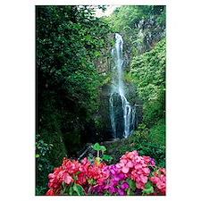 Hawaii, Maui, Wailua Waterfall And Rainforest