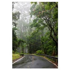 Hawaii, Maui, The lush Road To Hana