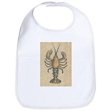 Vintage Maine Lobster scientific illustration Bib